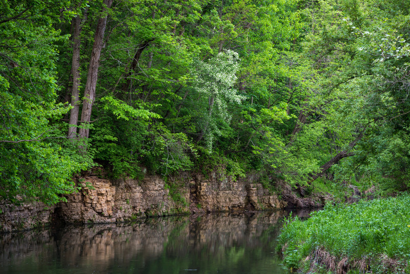 Spring green foliage grows over the dolomite rock formations along Pine Creek. Mt. Morris, IL<br /> <br /> IL-140425-0022