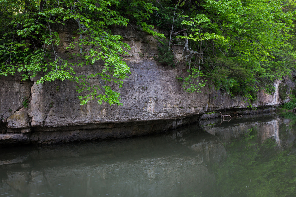 Spring Creek and Dolomite Rock