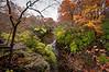 KR 021                      Autumn on Rock Creek, Kankakee River State Park, Illinois.