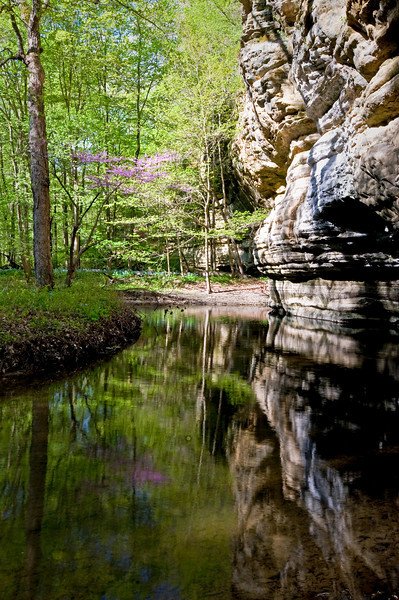 SR 067                         Spring in Illinois Canyon, Starved Rock State Park, Utica, Illinois.