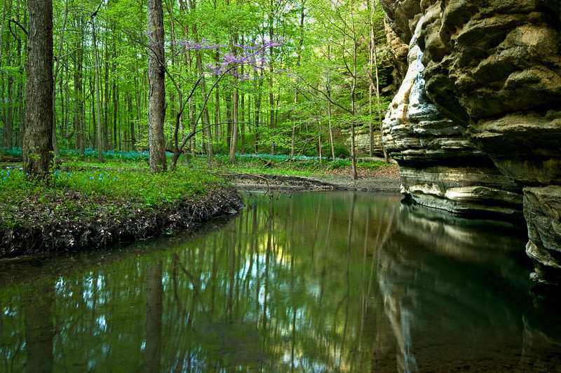 SR 062                        Spring in Illinois Canyon, Starved Rock State Park, Utica, Illinois.