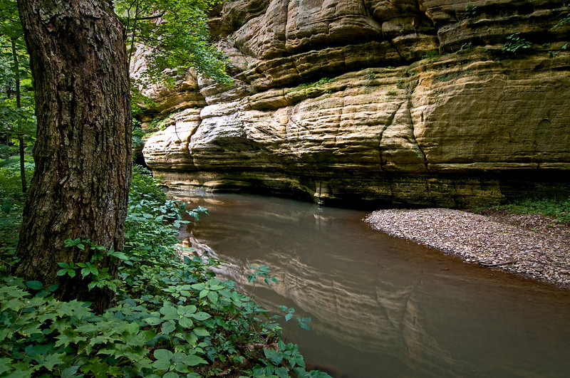 SR 010                     Summer in Illinois Canyon at Starved Rock State Park, Utica, Illinois.