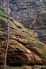 SR 019                       St. Peter sandstone walls of Illinois Canyon, Starved Rock State Park, Utica, Illinois