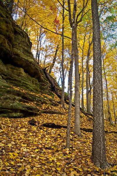 SR 034                        Autumn in Illinois Canyon at Starved Rock State Park, Utica, Illinois.