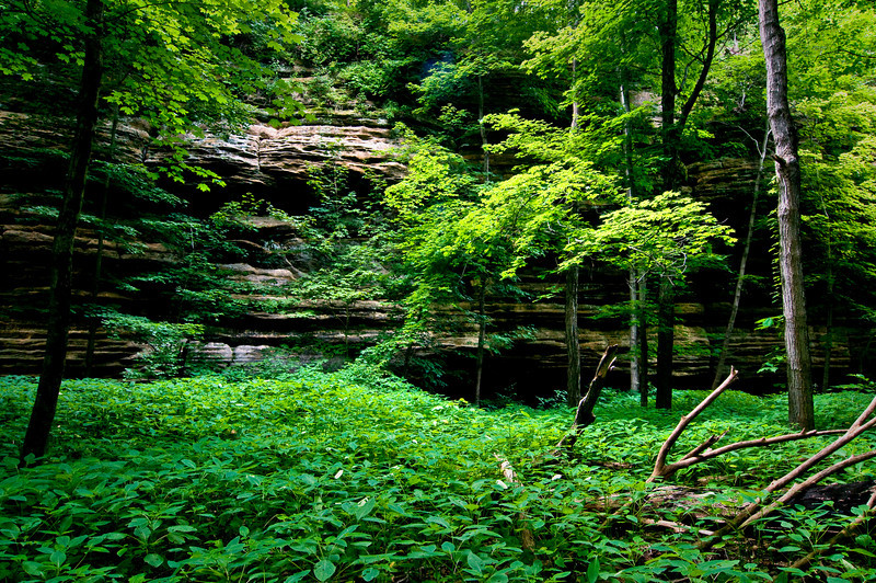 SR 016                       Summer in Illinois Canyon at Starved Rock State Park, Utica, Illinois