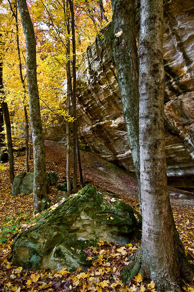 SR 028                     Autumn in Illinois Canyon at Starved Rock State Park, Utica, Illinois.