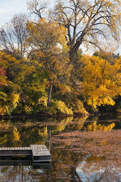 Fall color along the shores of Quarry Lake. Naperville, IL<br /> <br /> IL-111010-0049