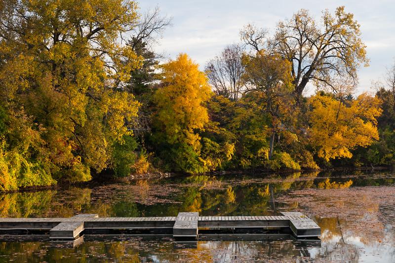 Fall color along the shores of Quarry Lake. Naperville, IL<br /> <br /> IL-111010-0039