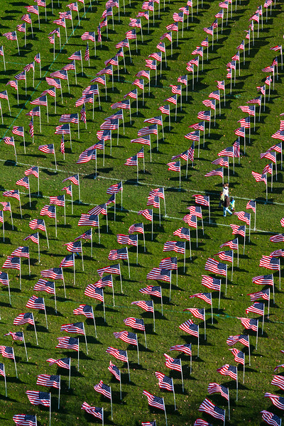 Healing Field of Honor