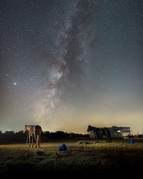 Horse Camp Redux