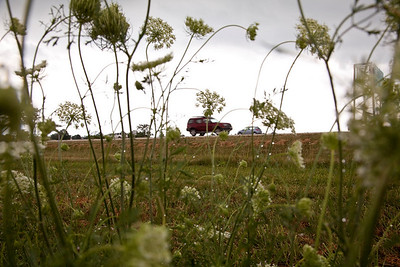West bound traffic drives down Route 16 past the 'No Mowing or Spraying' area off of East Broadway Avenue in Mattoon, Illinois on Thursday, July 8, 2010.  (Jay Grabiec)