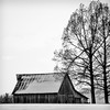 Snowy Barn Landscape in Black and White