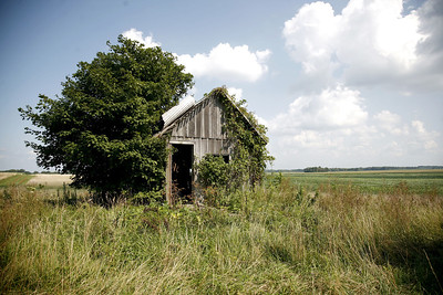 An old shed near some of the Ralston's land in rural Charleston, Illinois on July 26, 2008.  (Jay Grabiec/Staff Photographer)
