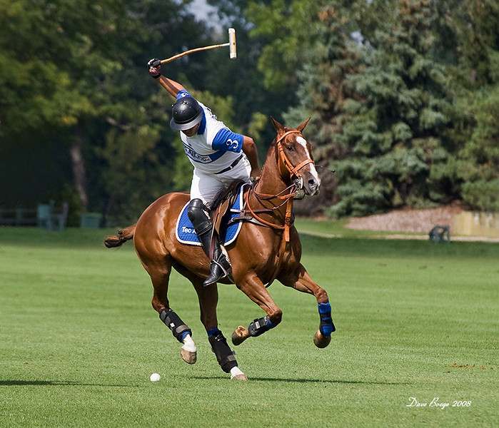 This image of Anthony Garcia at Oak Brook Polo was published in The Chukker International Polo Calendar and Directory 2009.