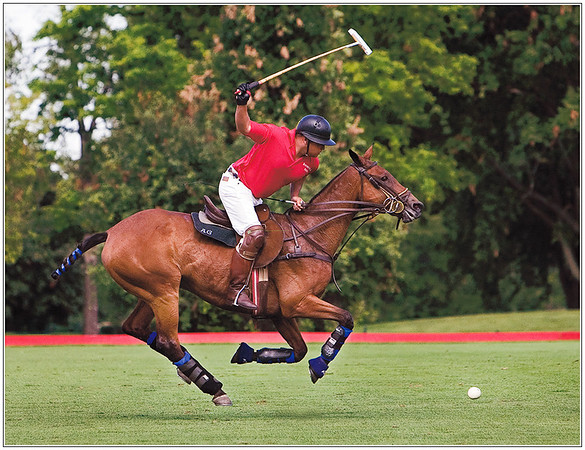 Oak Brook Polo (Illinois)