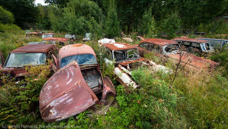 Båstnäs bilkirkegård, Sverige