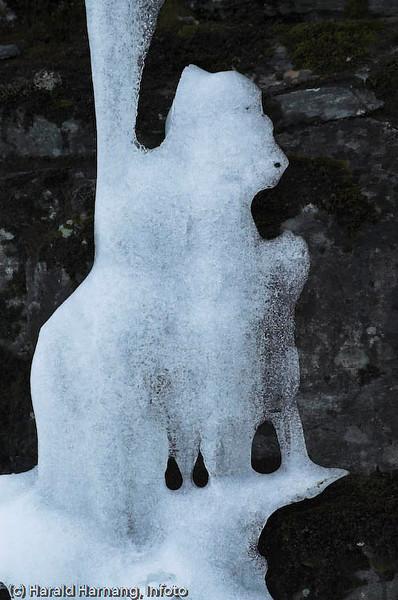 Naturlige is-skulpturer.