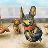 Dachshund Wiener Dog Race<br /> All Rights Reserved, copyright Laura Hoffman, 2011
