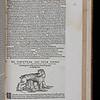 "<b>Author:</b> Conrad Gessner<br> <b>Title:</b><i> Historiae animalium lib. I. De quadrupedibus uiuiparism</i> (Zurich, 1551)<br> <b>Shelfmark:</b> F.10.1 <a href=""http://idiscover.lib.cam.ac.uk/primo-explore/fulldisplay?docid=44CAM_ALMA21392185550003606&amp;context=L&amp;vid=44CAM_PROD&amp;search_scope=SCOP_QUE&amp;tab=cam_lib_coll&amp;lang=en_US""> (catalogue record)</a>"