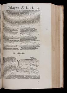 Author: Conrad Gessner Title: Historiae animalium lib. I. De quadrupedibus uiuiparism (Zurich, 1551) Shelfmark: F.10.1  (catalogue record)
