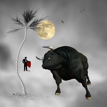 Fighter Bull