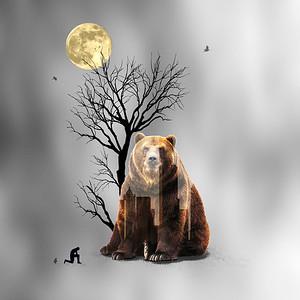 ENDANGERED Brown Bears