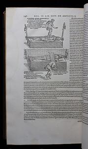 Illustrations, 16th century