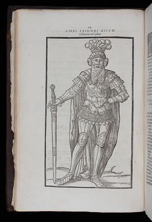 Illustration, 16th century