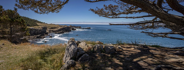 Salt Point Pano #2