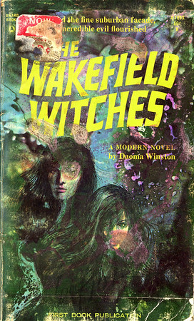 The Wakefield Witches by Daoma Winston, Illustration by Irv Docktor
