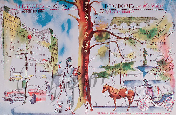 Bergdorf's on the Plaza, book cover illustration by Irv Docktor