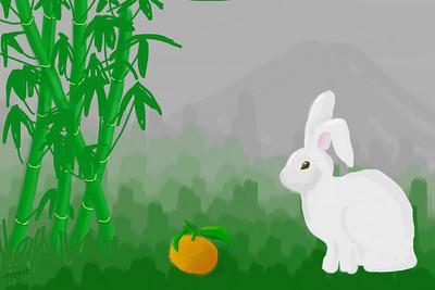 新年快乐!恭喜恭喜! 새해 복 많이 받으세요! cung chúc tân xuân! Happy New Year 2011, year of the rabbit!