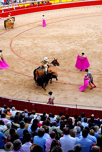 I always envisioned a bullfight as man vs. bull.  Not 7 men and two armored horses vs. bull