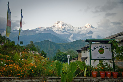 This was in the town of Ghandruk, pleasant town where you can't buy land if your grandparents weren't born there.