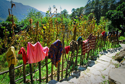 Clothes drying on a fence