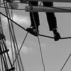 Sailor in the rigging of a brig - monochrome