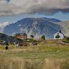 Farm houses and sheep on a Lofoten island