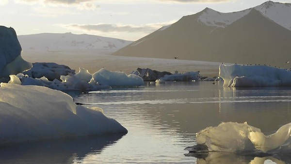 Poetic video of floating icebergs on Jökulsárlón glacial river lagoon during a summer night with midnight sun, at Vatnajökull National Park