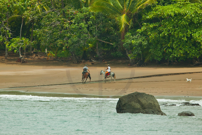 Horse riders with dog at the beach, Punta Marenco, Osa Peninsula, Costa Rica