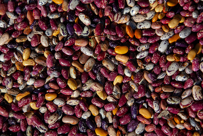 Beans spread out on a surface to dry, village of Tadapani, Nepal