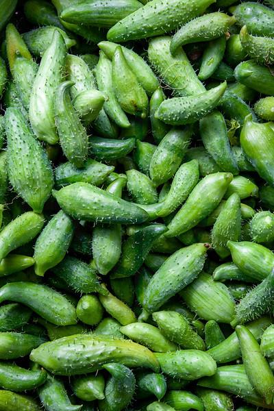Cucumbers,  Jinudhanda, Nepal