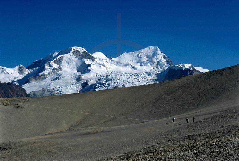Bolivian with mules in the Cordillera Real near the mountains Illampu and Ancohuma, Bolivia