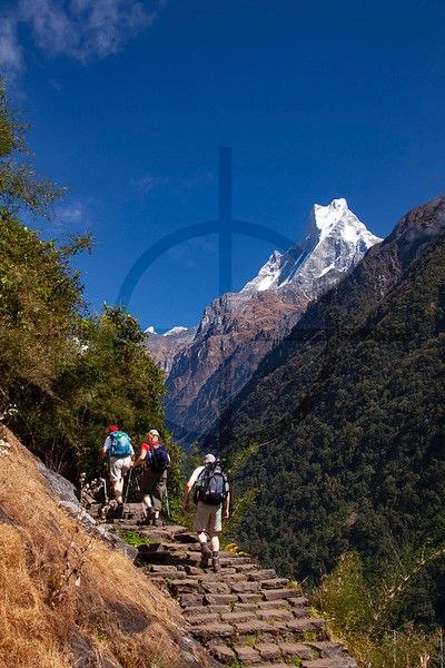 Machapuchare as seen from the Modi River Valley, Nepal