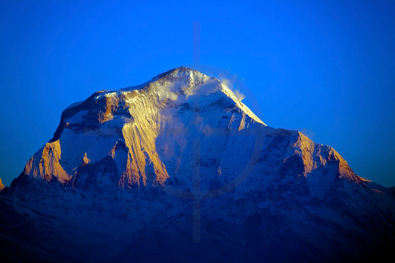 Dhaulagiri basking in morning light as seen from Poon Hill, Nepal