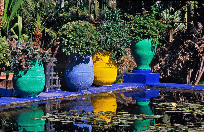 Garden and pond at  Jardin Majorelle, Marrakesh, Morocco