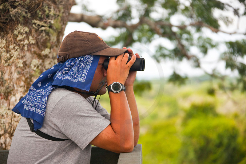 Guide watching birds, Yasuní National Park, Ecuador