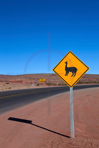 Lama crossing road sign, RA 9 near Abra Pampa, Jujuy, Argentina