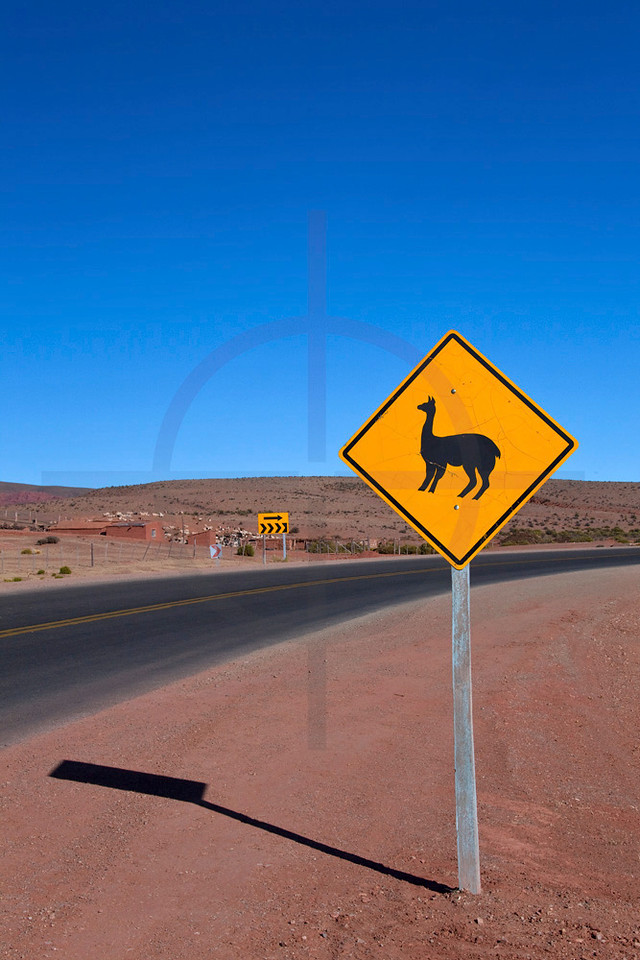 Lama crossing road sign, RA 9 near Abra Pampa, Jujuy, Argentina