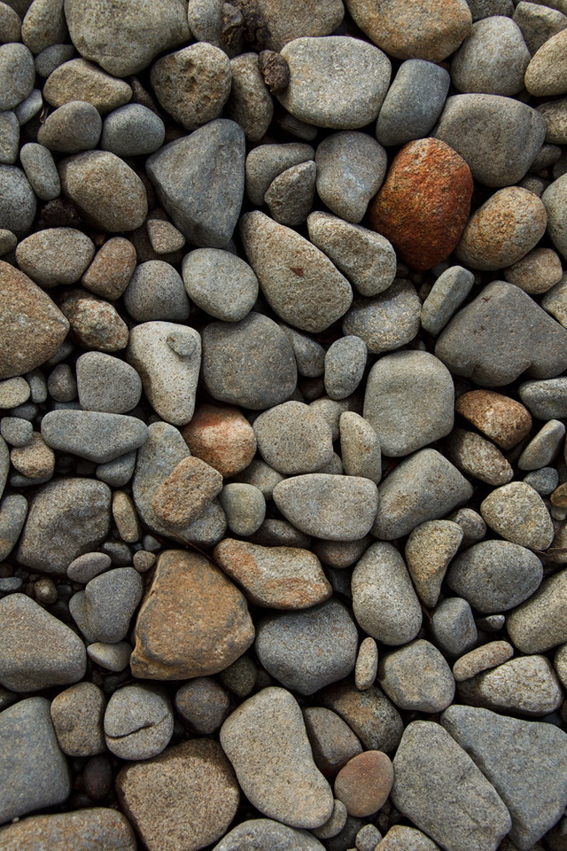Pebbles, Lake St Clair shore, Tasmania, Australia