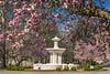 Spring Fountain
